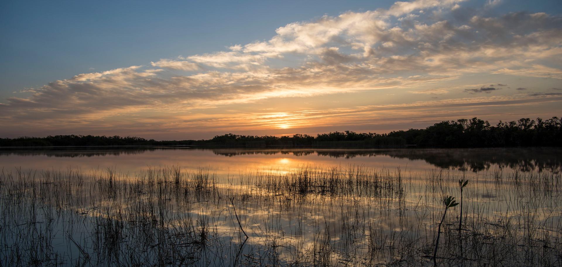 EvergladeMorning__17web.JPG