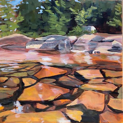 Garden Under the Lake, Sebec by Sandra Lemmerman