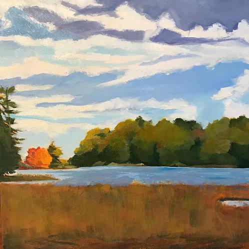 Tide Brook Marsh by Mary Mraz