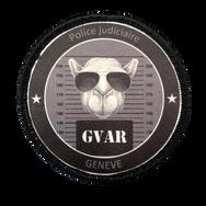 PCGE GVAR 1_SP.png