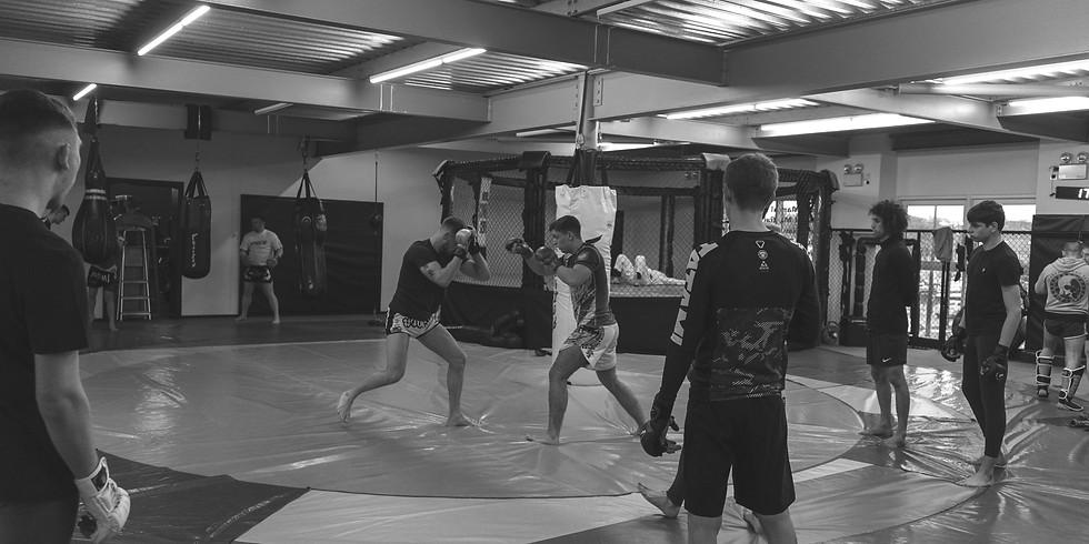 MMA BEGINNER TO WINNER - 10 WEEK COURSE