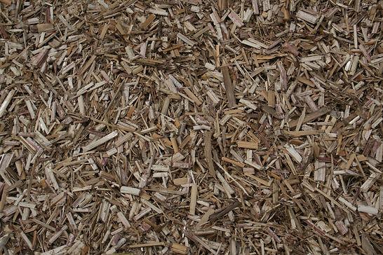 Miscanthus récolté ensilé paillage fertilisant litière chat chien poulets vaches alimentation ration animale