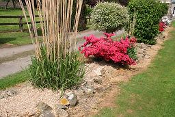 biocanthus miscanthus plante paillage désherbant fertilisant esthétique protecteur naturel