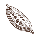 cacao4.png