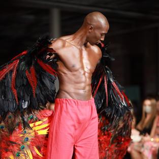 The Phoenix God