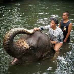 Singapore, Bali, Thailand Oh MY!