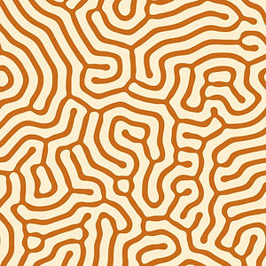 Patterns-24.jpg