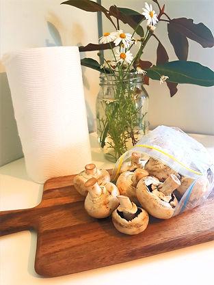 mushrooms%20and%20flowers_edited.jpg