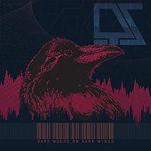 dark words on dark wings album cover