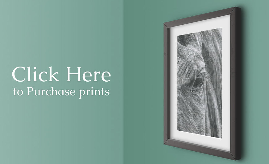 Picture of Horse on green wall, link to PhotograFix prints of artwork by Kirstianne Wells