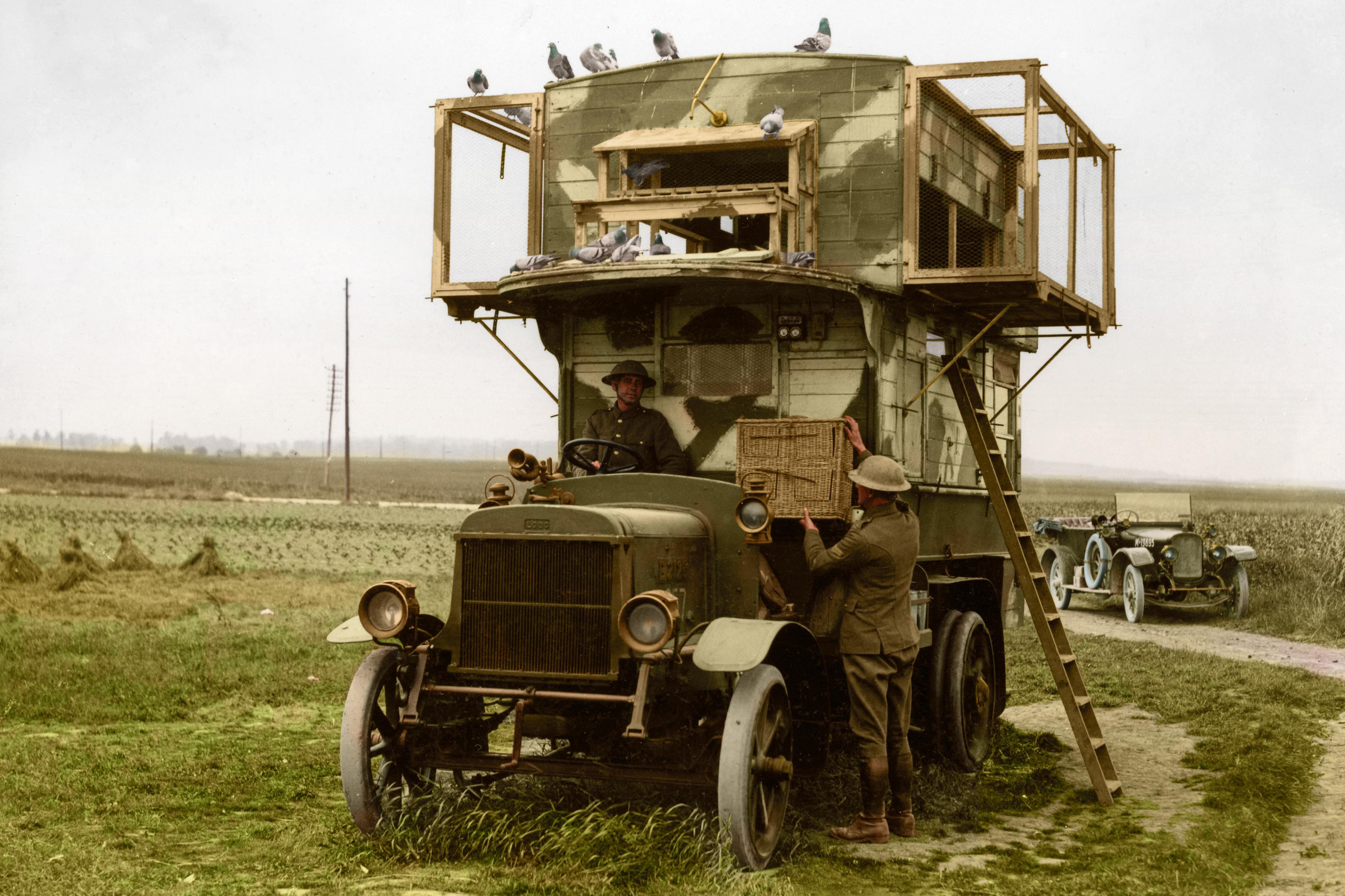 A mobile pigeon loft
