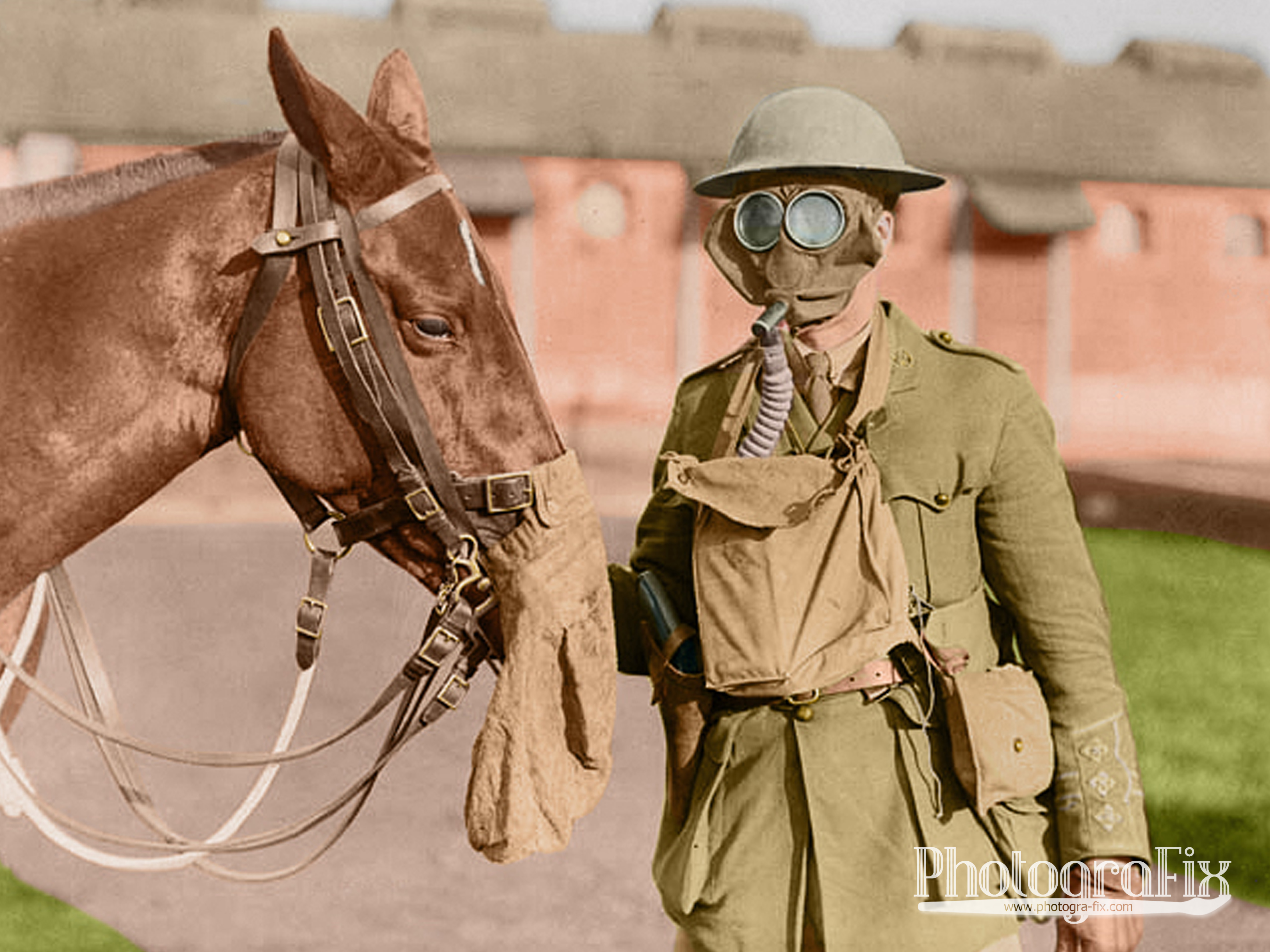 Canadian Soldier & Horse
