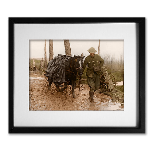 Somme 1916: Soldier and Horse