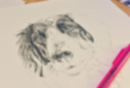 Portrait of Dog, Work in Progress Pencil Drawing.  Pet portrait by Kirstianne Wells