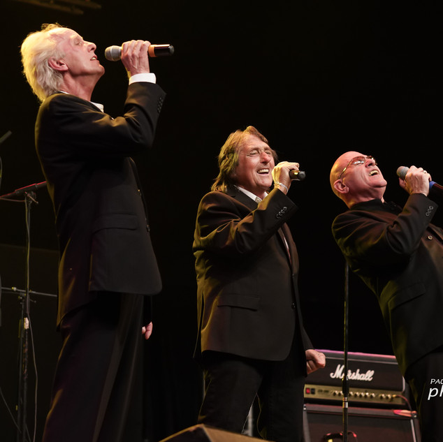 The Tremeloes 019.jpg