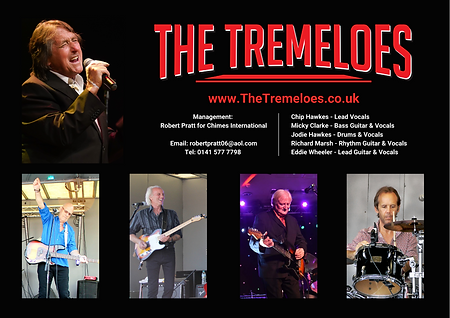 The Tremeloes - 2021 Promo Image