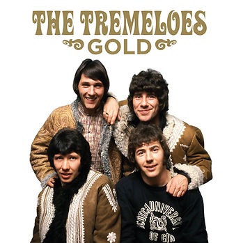 The Tremeloes - Gold - CD/Vinyl Set