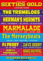 Sixties Gold Poster