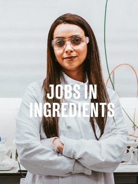 FP_Jobs_MN.jpg