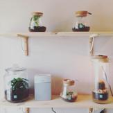 Magmade - boutique de décoration