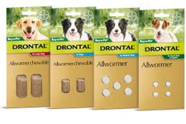 Drontal All Wormer Chewable Large 35Kg 2 Pack
