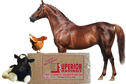Superior Wood Shavings - approx 14kg