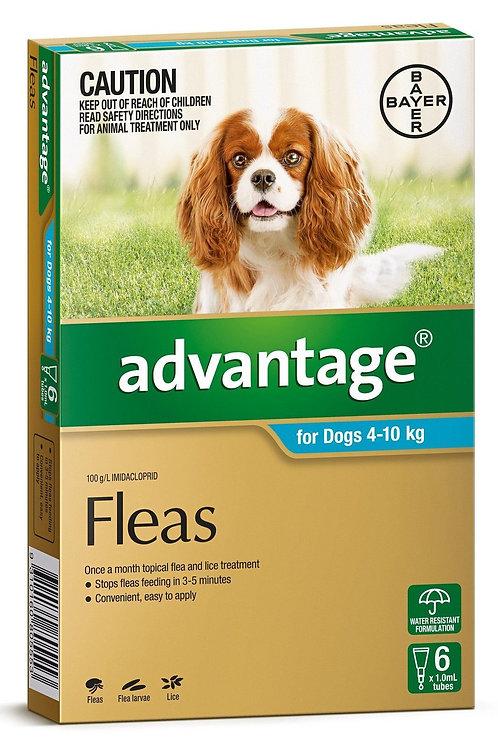 Advantage for Fleas - dogs 4-10kg