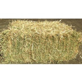 Oaten Hay Bale - temporarily unavailable