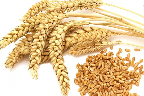 Organic Wheat (Country Heritage) 20kg