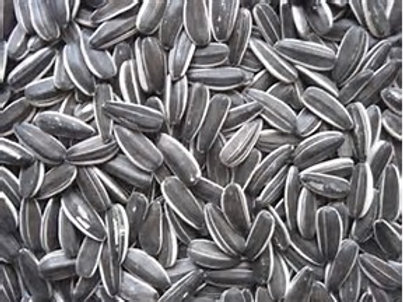 Grey Sunflower Seed - Not Available at present