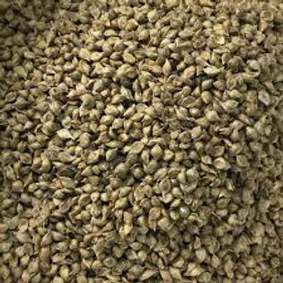 Jap Millet   *** Not Availabe at Present