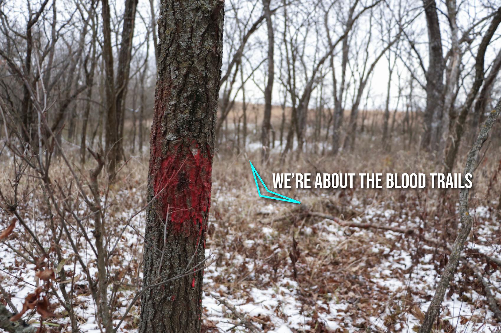 BLOODTRAILS.png