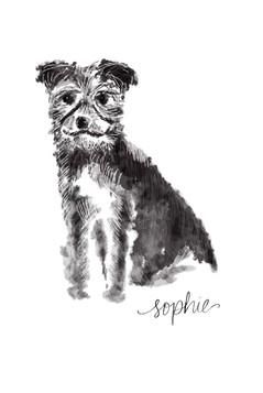 Sophie art.jpg