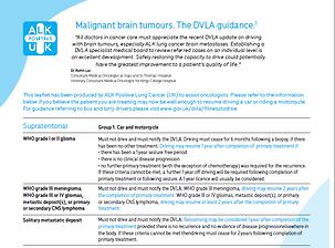 DVLA Guidelines.PNG
