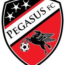 Pagasus logo