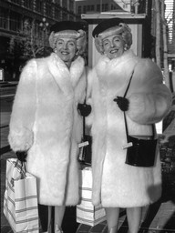 Brown Twins in White Fur