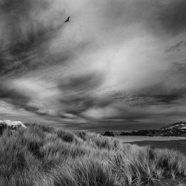 Goat Rock Beach Sky No2