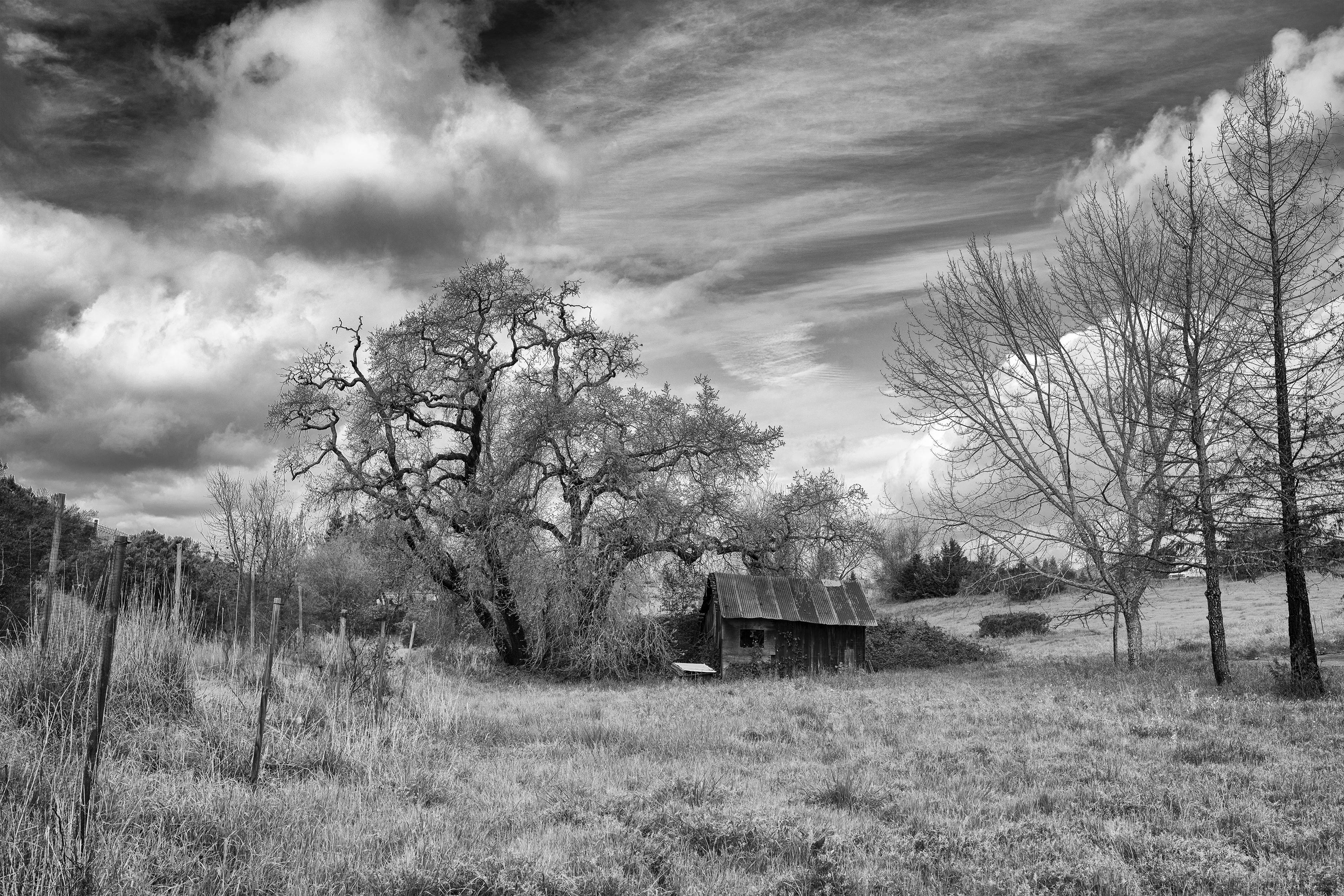 Old Barn Hwy 12, 2016.