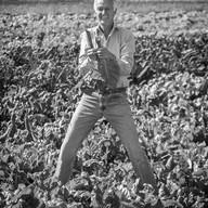 Warren Weber, Star Route Farms