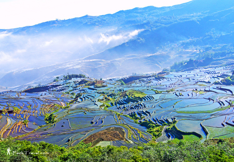 Blue terraced field in Duoyishu