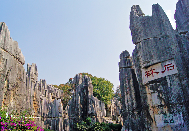 Stone Forest, Shilin