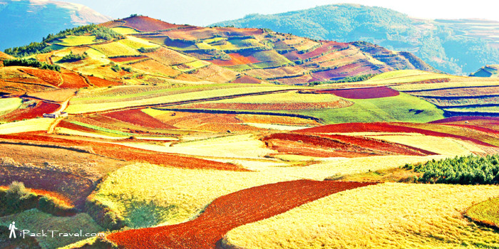Dongchuan Red Land in Kunming