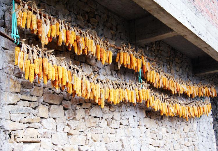 Dried corn in Pugao Old Village