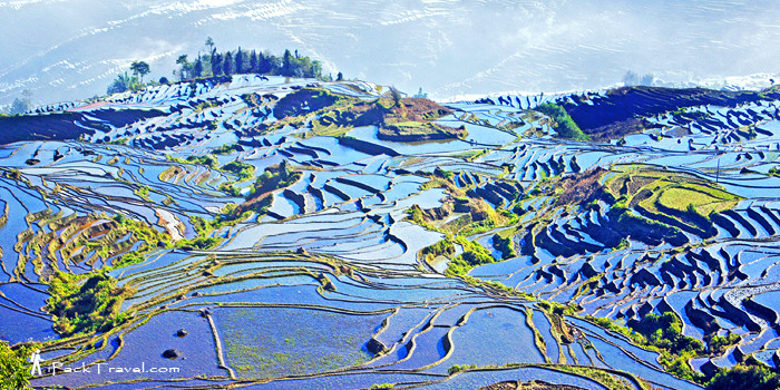 Yuanyang Hani Terraced Field in Yunnan