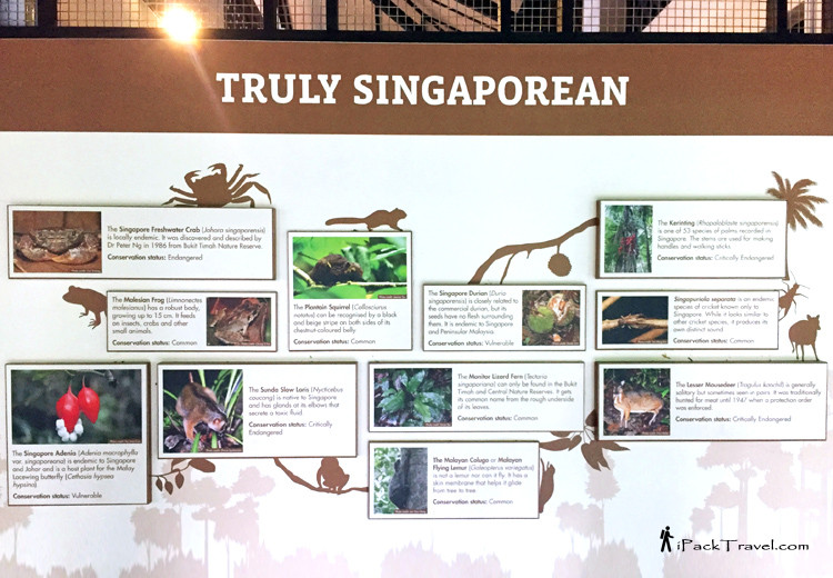 Bukit Timah Nature Reserve Visitor Centre