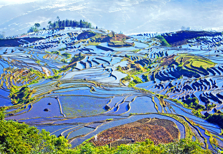 Yuanyang Hani Terraces in Yuanyang
