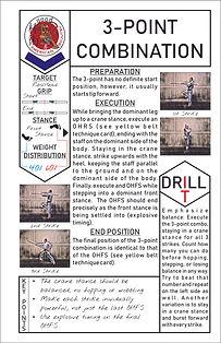 Blue Belt Technique Cards Web Graphic.jp
