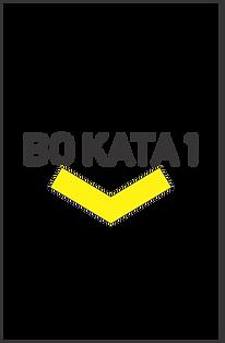 Bo Kata 1 Web Graphic.png