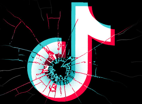 From social media darling to America's most wanted: Your guide to TikTok