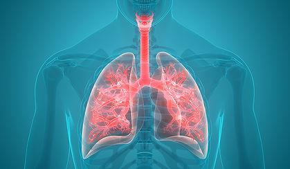 Lung Animation.jpeg